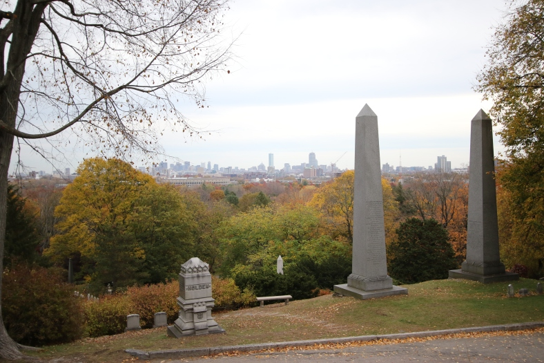 View from Mount Auburn to Boston
