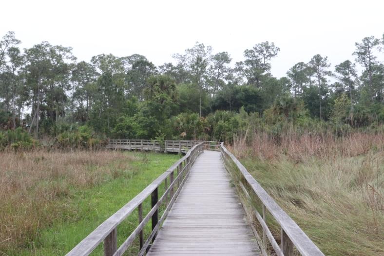 Boardwalk across the Wet Prairie