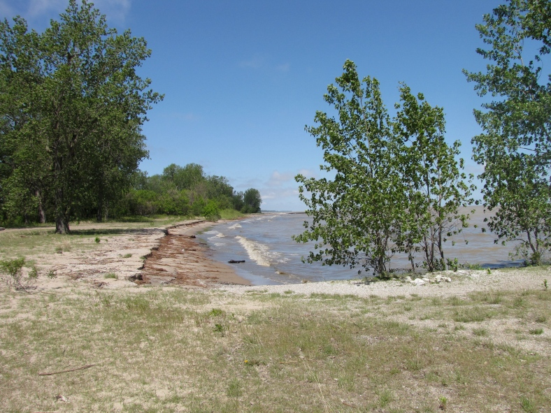 Lake Erie shoreline at Magee Marsh