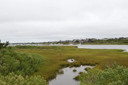Madaket Harbor
