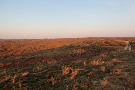 Sunset over the moors, from Altar Rock