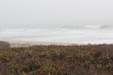 Foggy morning at Cisco Beach