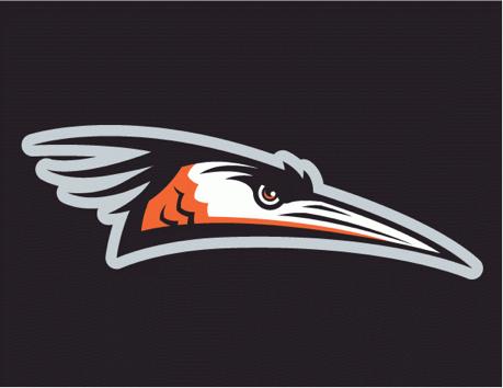 delmarvashorebirdscaplogo